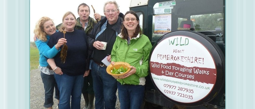 Local Attractions - Wild About Pembs